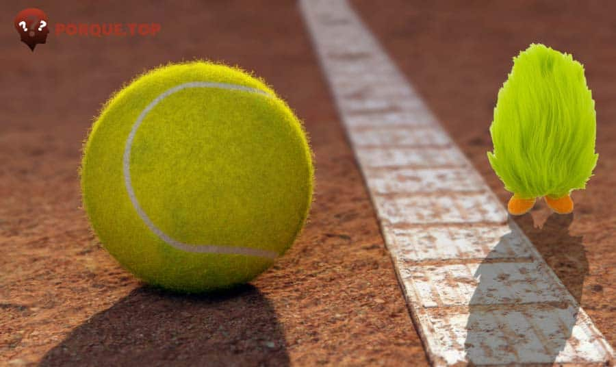 ¿Por qué las pelotas de tenis tienen pelo?