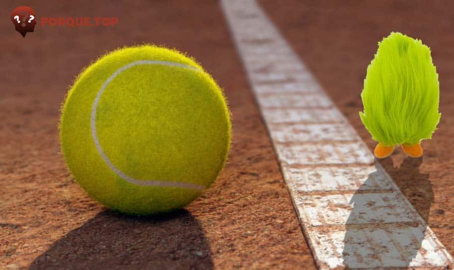 ¿Por qué la pelota de tenis tiene pelos?